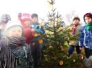 Vánoce v lese 2015