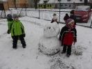 Projekt Bílý sněhulákový den, 14.2.2018